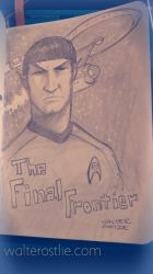 The Final Frontier by Walter-Ostlie