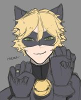 Chat Noir   Doodle by Tokayashi