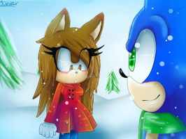 :CE: Amethyst and Sonic: Winter by TothViki