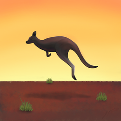 Roo by ScienceWithSteve