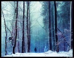 Winterwald by RobinHalioua