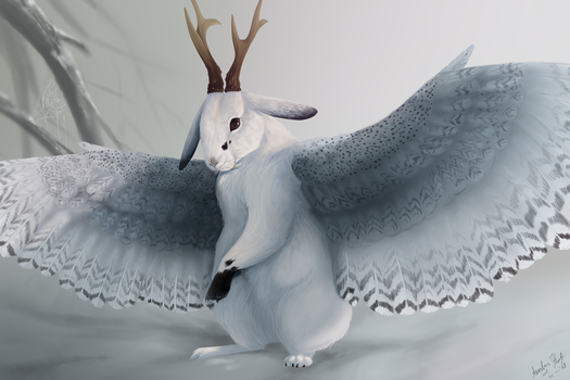 Another Wolpertinger by DikkeBobby