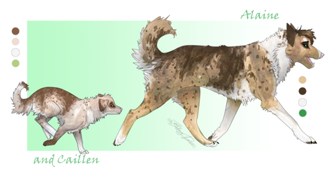 Alaine and Caillen - New Ref by amecheval