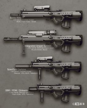Adapted Rifle Variants by Shimmering-Sword
