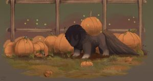 TWWM: Fall Colors - The Pumpkin Patch by kokodama