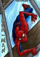 ATC Spidey by y2hecate