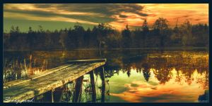 Sunny pond by Th3Un1qu3