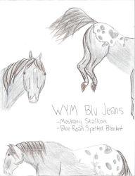 WYM Blu Jeans by EbonyDreams