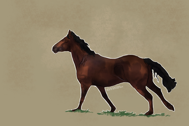 ..: | Beauty | :.. COMMISSION by FluffyPinkHorses