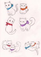 Ninja Kitties by MamaDonnie
