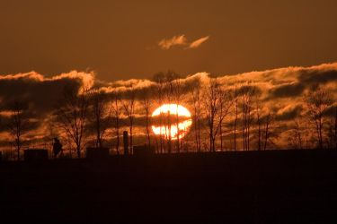 Sunset behind trees by ChristophMaier