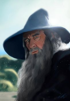 Gandalf the Grey by Quindayo
