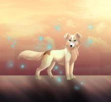 Elegance by LiaBorderCollie