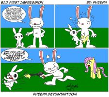 Bad First Impression by pheeph