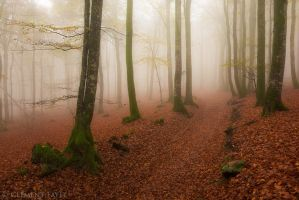 Sweet Autumnal Mood by LG77