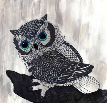 Owl caught in the rain by color-freak1