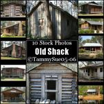 Old Shack by TammySue