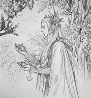 Birds and Thranduil by evankart