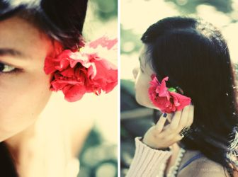 hibiscus by thresca