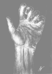 Inverted Traditional Hand Sketch by Shastro