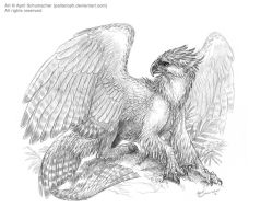 Philippine Gryphon by pallanoph