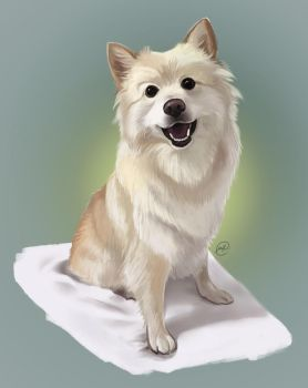 Cute Doggo Commission by maaya-art