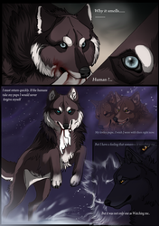 AFH Page 5 by TheMysticWolf