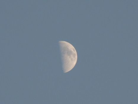 Moon by Bhavesh-P
