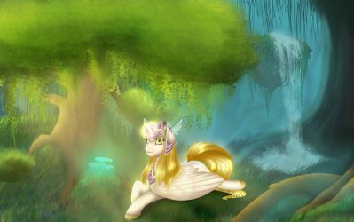 Pone in the forest by Havoxious