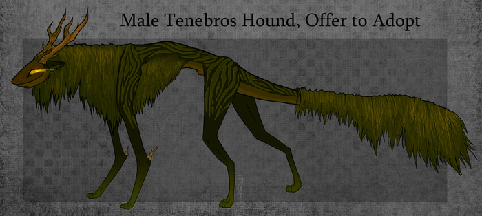 O.T.A - Male Tenebros Hound (Closed) by LoreMasterStudio
