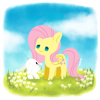 Fluttershy by doqwor