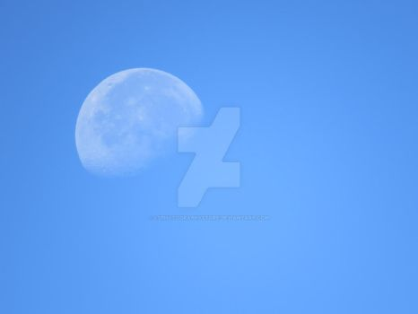 Bright Moon by LSPhotographyStore