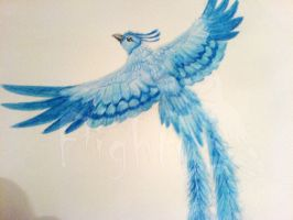 articuno water colour