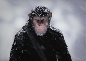 Caesar - War Of Planet Of The Apes by giorgiomarino