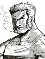 Old Man Logan by Mark-Clark-II