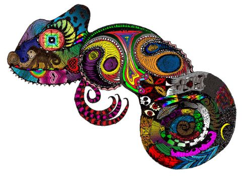 Chameleon by acdcdrummer
