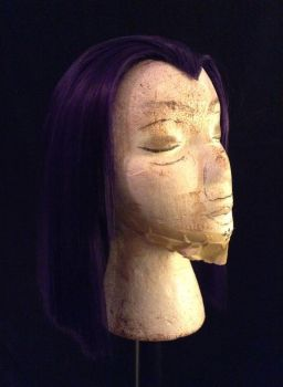 Raven Wig Commission/ tutorial by Emi-leigh