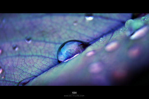 Water drop by 911OFFICIAL
