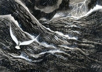 The Gull and the Storm by emychaoschildren