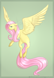 Fluttershy by crazycoolcats