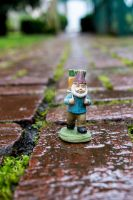 Wet Bricks Gnome by thedustyphoenix