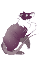 Opossums in your galaxy by StripedPaws