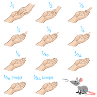 Hands Comparison by resizer