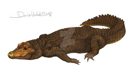 Orange cave-dwelling dwarf crocodile by Gredinia