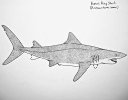 Bower's king shark by Saberrex