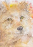 Watercolor Wolf by MinamiTakahashi