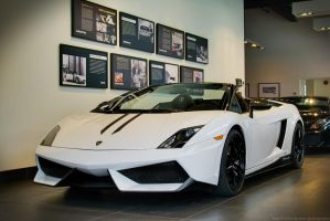 Gallardo Performante by SeanTheCarSpotter