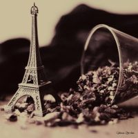 Tea and Memories of Paris by unknown-dark