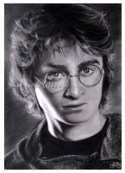 harry potter by jovee