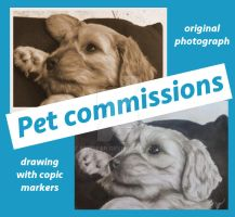 Pet Commissions Open 2018 by faeriean